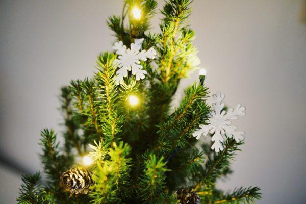 Zweibrücker schmücken ihre Weihnachtsbäume gemeinsam!